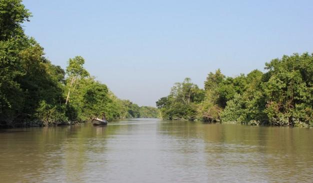 Tengragiri Wildlife Sanctuary